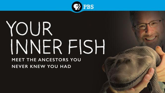 Your inner fish allflicks for Your inner fish