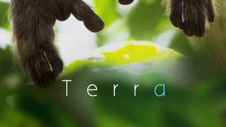 Netflix Box Art for Terra