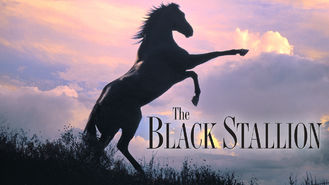 Netflix box art for The Black Stallion